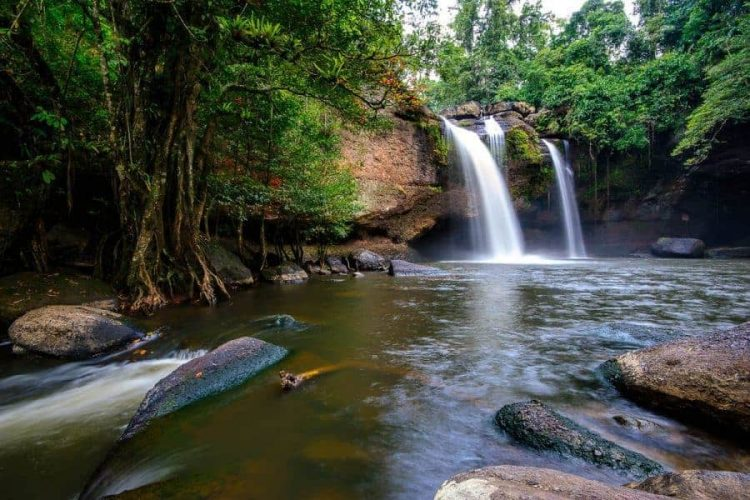 Enjoy the Greenery at Khao Yai National Park