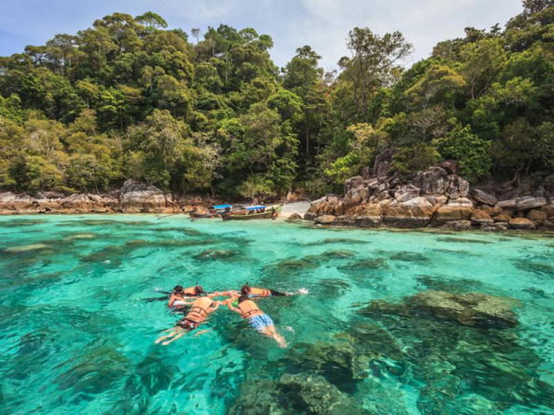 Take a snorkeling day tour to spot pink dolphins - Things to Do in Koh Samui