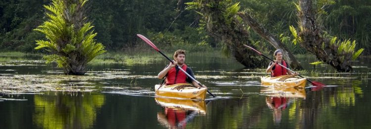 Kayaking in the Backwaters of Alleppey