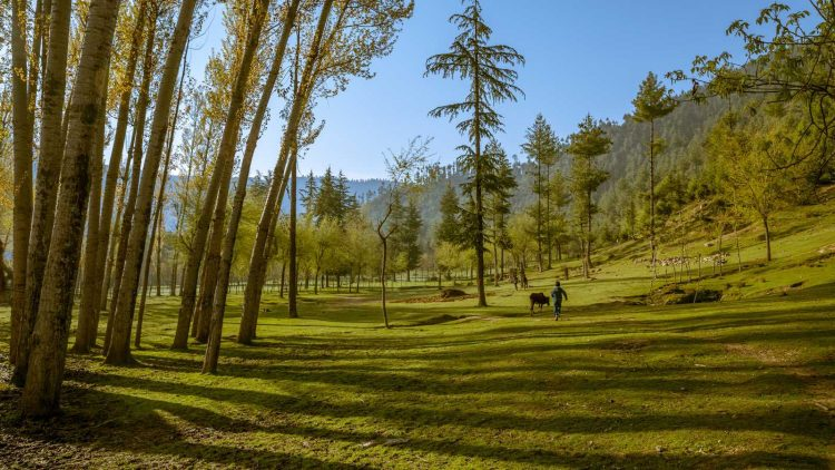 Kupwara - Places to Visit in Kashmir