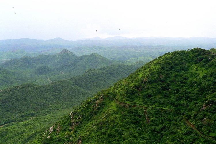 Aravali Nature Trekking - Things to Do in Udaipur