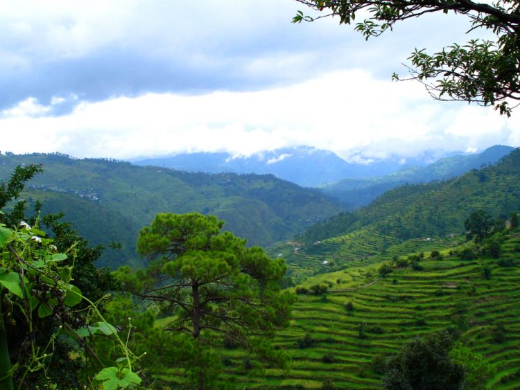 The Ranikhet Hill Station