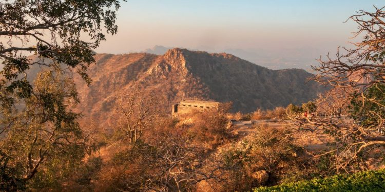 Sajangarh Wildlife Sanctuary - Things to Do in Udaipur
