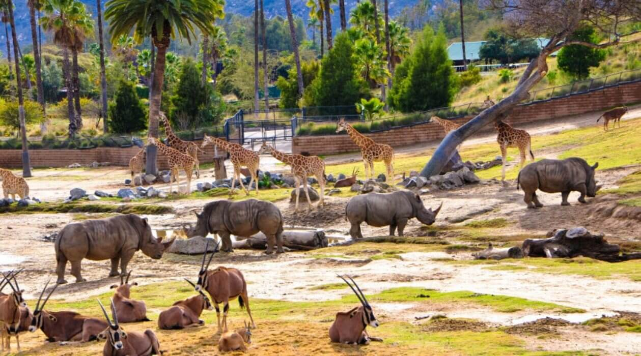 Theme parks in Southern California