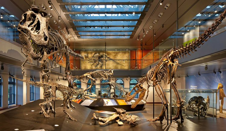 Los Angeles Natural History Museum