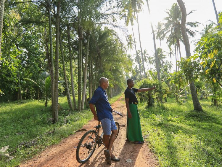 Exploring the island and mountain by bike