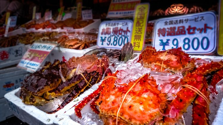 Shopping from the Morning Market | 10 Best Things to do in Hakodate