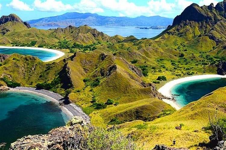 Explore Komodo Island | 10 Best Things to Do in Flores