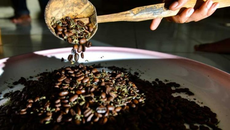 Stop by to have Quality Caffeine | 10 Best Things to Do in Aceh