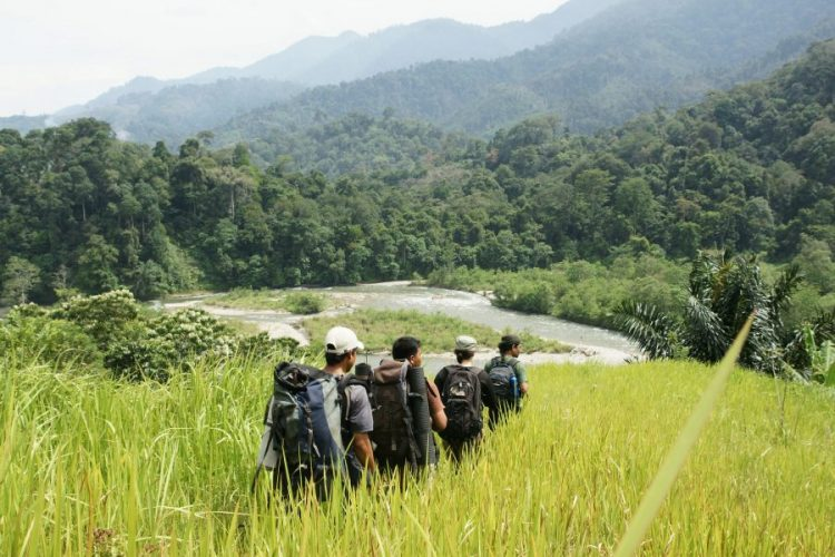 Explore the Rainforest in Ketambe | 10 Best Things to Do in Aceh