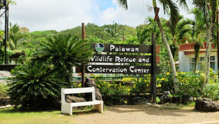 Appreciate the efforts of Palawan Wildlife Rescue and Conservation Center