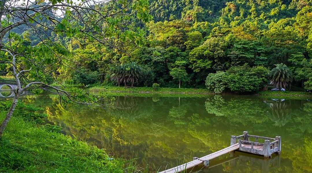 Travel Around the Cuc Phuong National Park