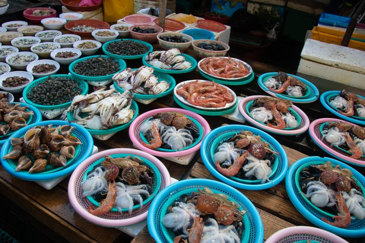 Be at the chaos of Jagalchi Fish Market - Things to Do in Busan