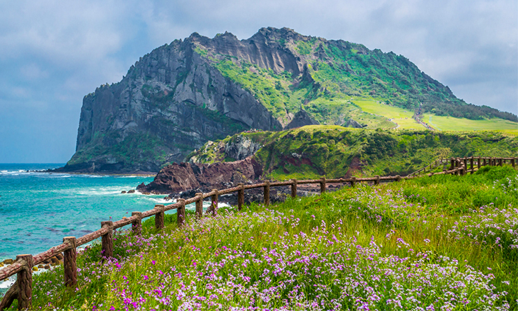 Beautiful‌ ‌Islands in South Korea