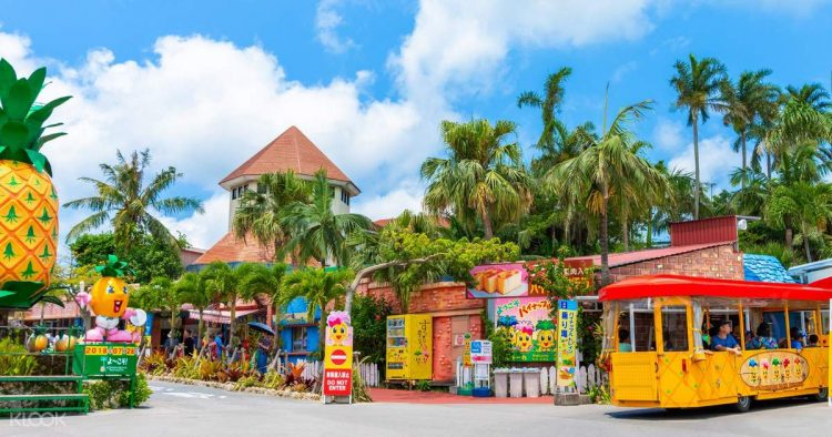 pineapple themed park - Things to Do in Okinawa