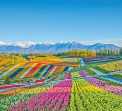 10 Best Things to do in Furano